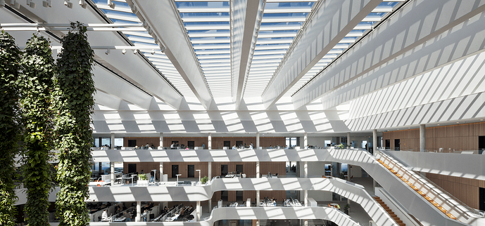 Reclaiming daylight through sustainable design