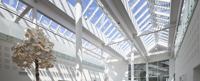 How can VELUX Modular Skylights help contribute towards the sustainability of your building?