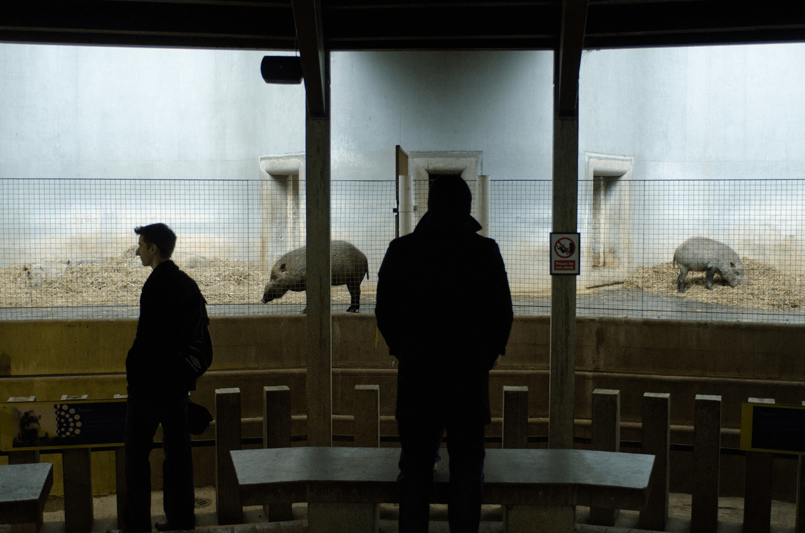 Light contrast with view on a two persons looking at animals in a zoo cage